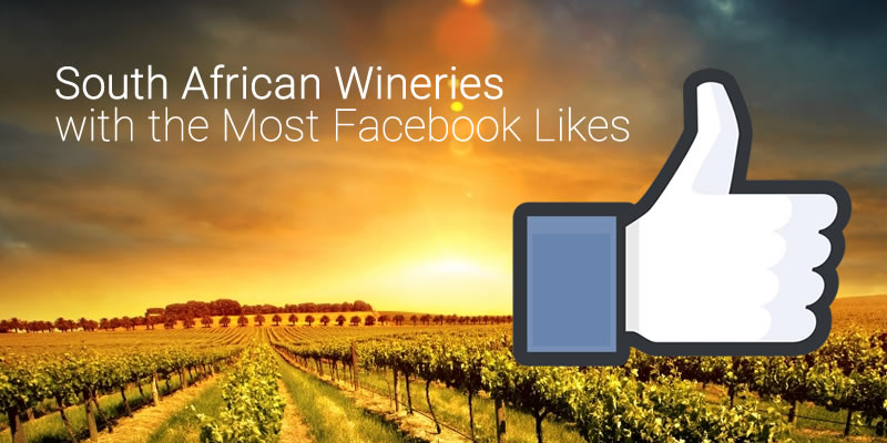 South African Wineries with the Most Facebook Likes photo