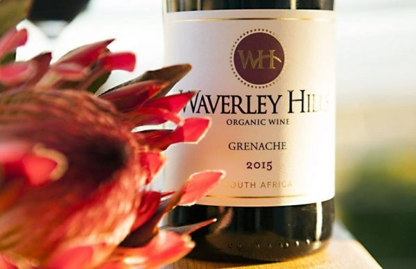 Wine Review: Waverley Hills Grenache 2015 photo
