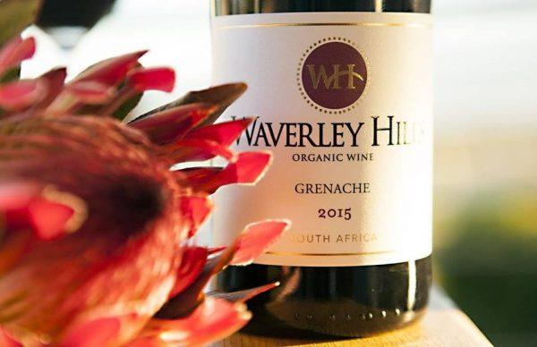 Wine Review: Waverley Hills Grenache 2015 photo