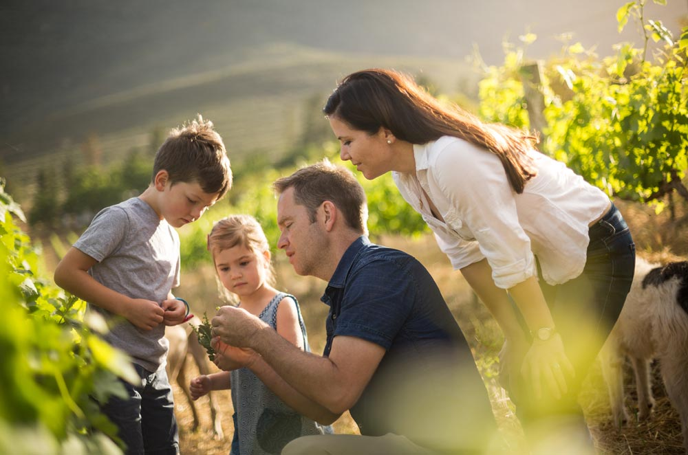 Mullineux family South African winemaker, Andrea Mullineux, named World Winemaker Of The Year