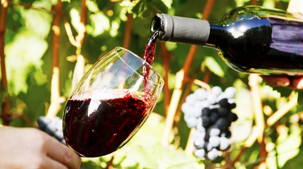 Time for SA Pinot Noir to Get Recognition it Deserves photo