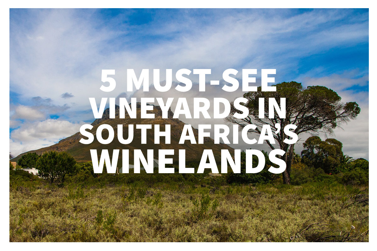 Must-See Vineyards in South Africa photo