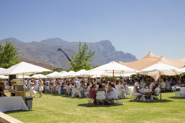 Get your tickets for the Franschhoek Summer Wine Festival photo