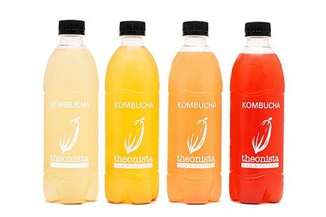 Everything you need to know about Kombucha photo