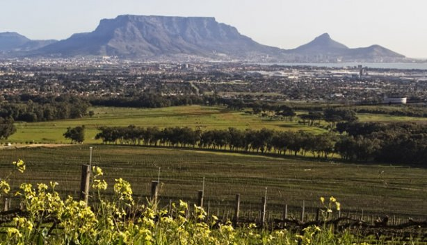 3 Ways to Do Valentine`s Day Differently with De Grendel photo