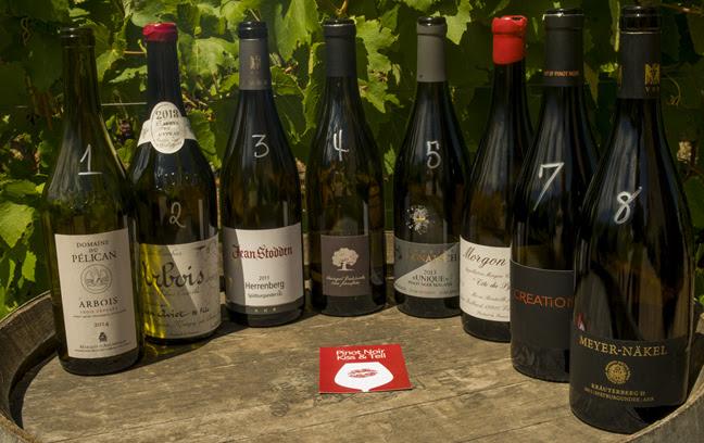 Hemel-en-Aarde Pinot Noir Celebration in Review photo