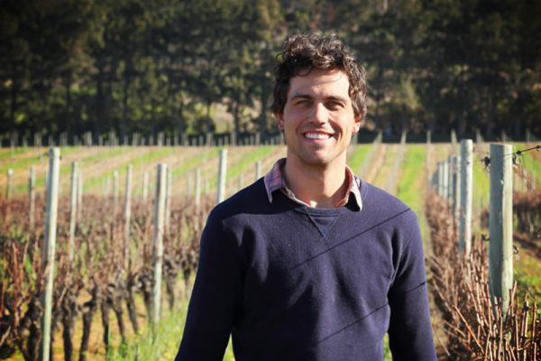 Winemaker Jacques Du Plessis talks 2017 harvest at Constantia Uitsig photo