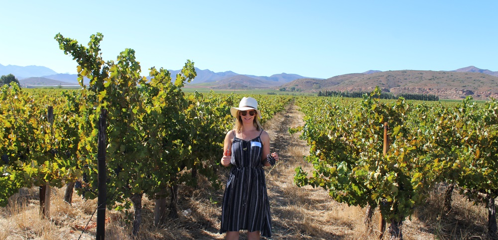 Three Reasons To Discover The Robertson Wine Valley photo