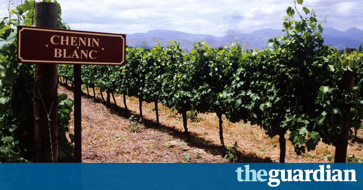 The Chenin Agreement: One Grape, Many Wines photo