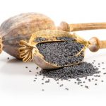 The risks associated with Poppy Seed tea photo