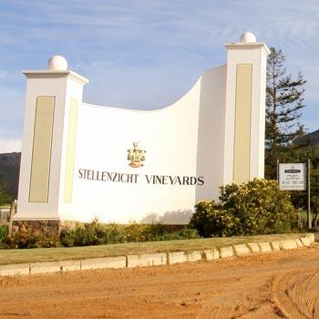 Wine Innovation Profile: Stellenzicht Vineyards photo