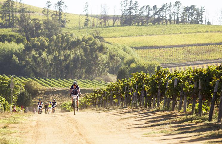 Cape Town Cycle Tour Mtb Challenge photo