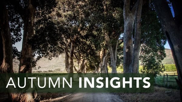 Autumn insights from Constantia Uitsig photo