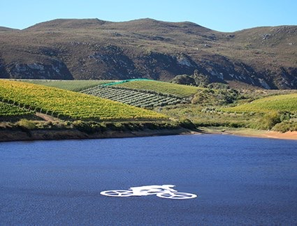 Creation welcomes Cape Epic to Hemel-en-Aarde photo