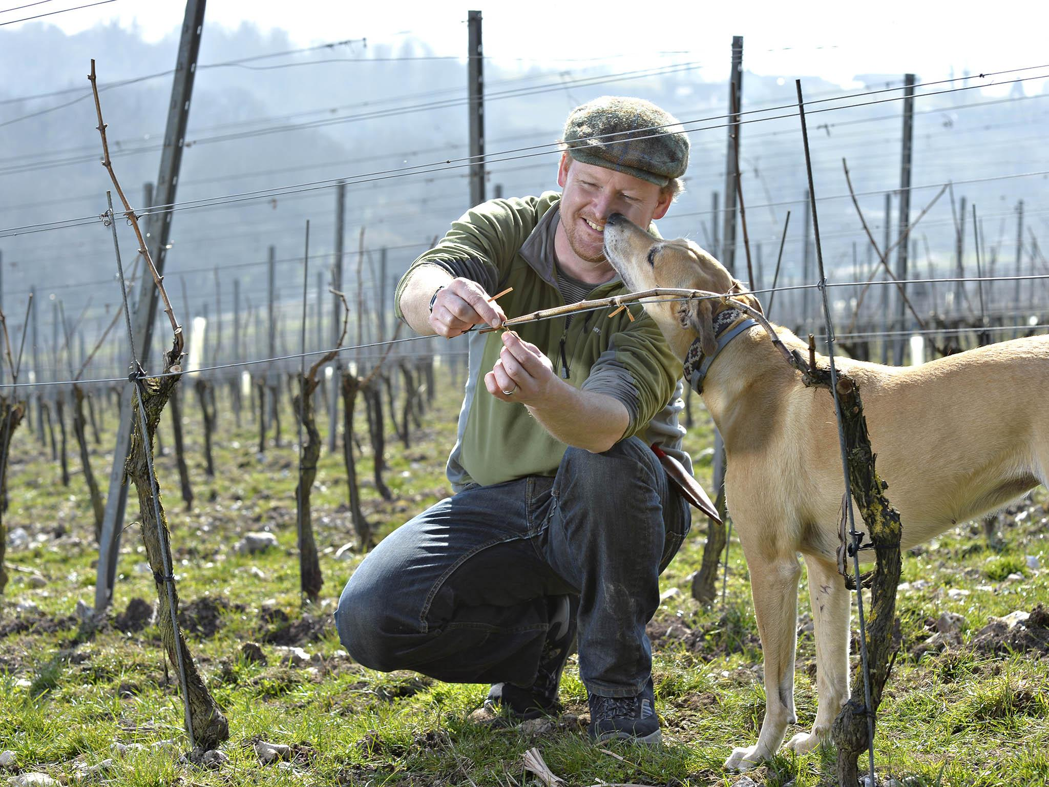 Meet The Winemaker: Dermot Sugrue, The Man Who Put English Sparkling Wine On The Map photo