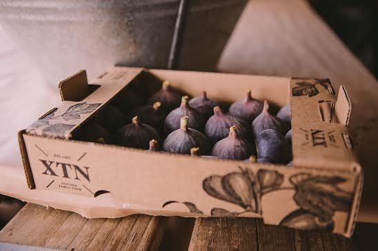 figs 4 Things to drink at South Africa`s first Fig Festival