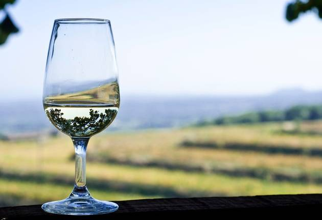 Adore Chenin Blanc? You Must Visit The Breedekloof Wine Valley photo
