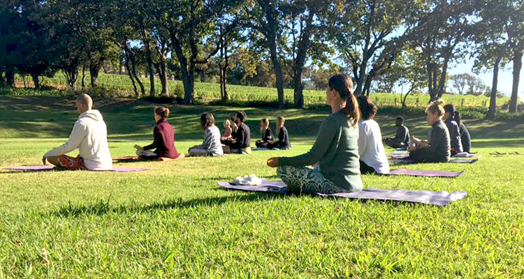 Yoga Among The Vineyards At Groot Constantia photo