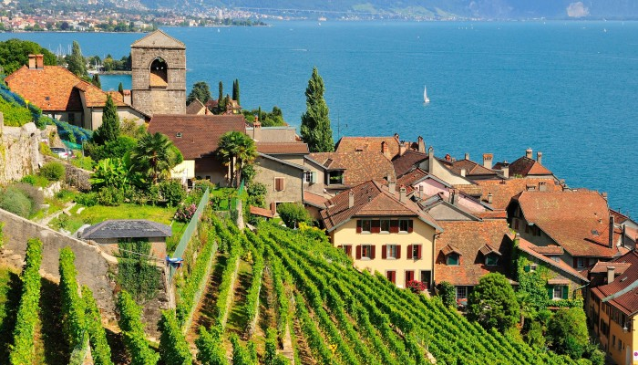 Three Fine Swiss Wines From Lavaux In The Vaud By Domaine Du Daley photo