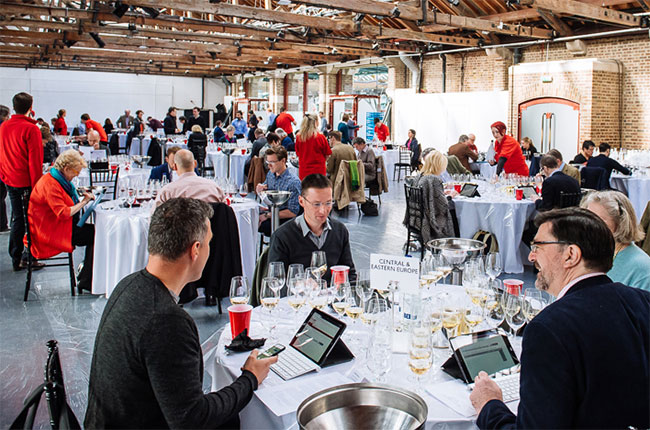 Professional Wine Tasting: How Many To Taste In A Day? photo