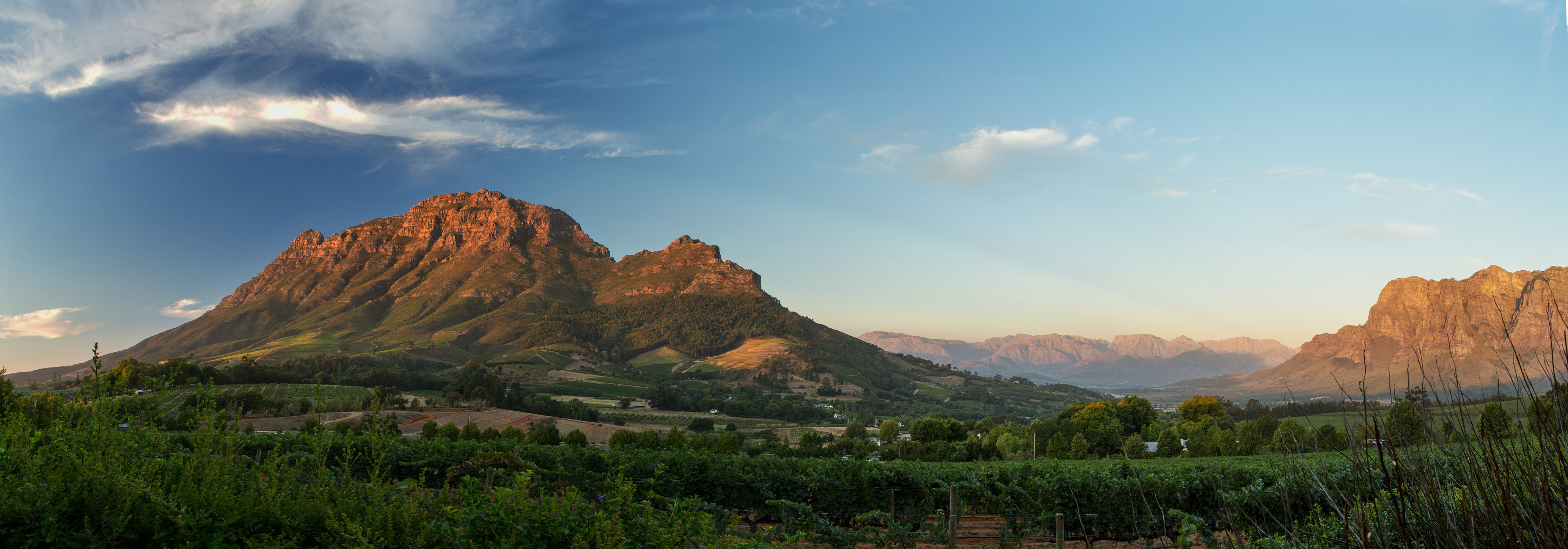 Diverse Flavours Adds Delaire Graff Estate Wines To Its Portfolio photo