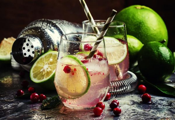 The Gin and Tonic Festival is heading to KZN photo