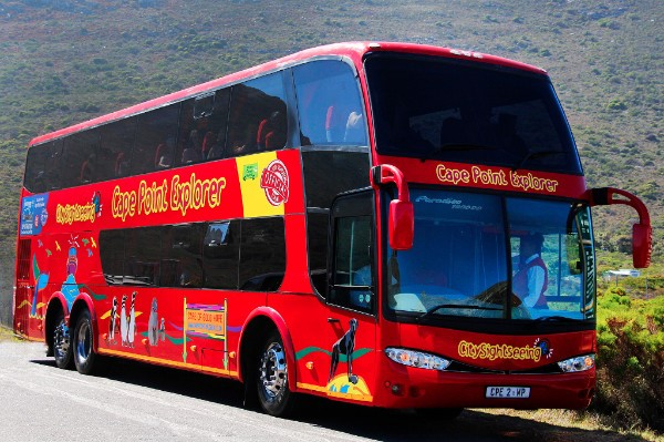 City Sightseeing Now Connects All Cape Town Big 7 Attractions photo