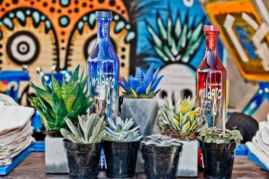MILA 12 800x534 e1495011126387 These Are The 10 Best Tequilas In The World, According To 10000 Tequila Drinkers