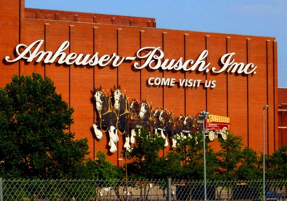 Anheuser-busch Inbev Shuts Out Craft Beer Brewers By Hoarding Hops photo