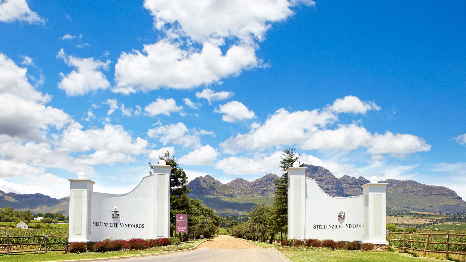 Distell sells stellenzicht winery to ernie els wines for Jardin wine south africa