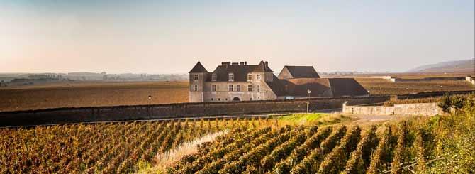 World's Most Wanted Burgundies photo