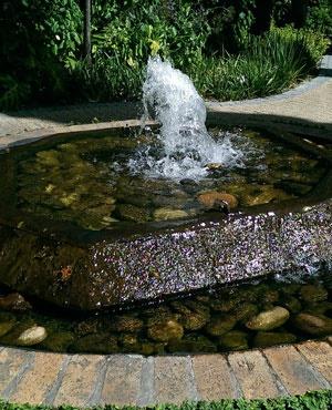 Stellenbosch Municipality Announces Tougher Water Restrictions photo