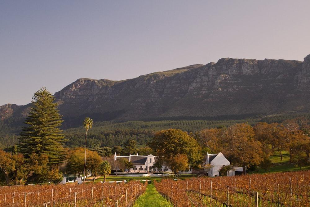 South African ?liquid Gold? Wins Platinum At World Wine Awards photo