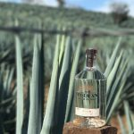 Moët Hennessy releases its first Tequila photo