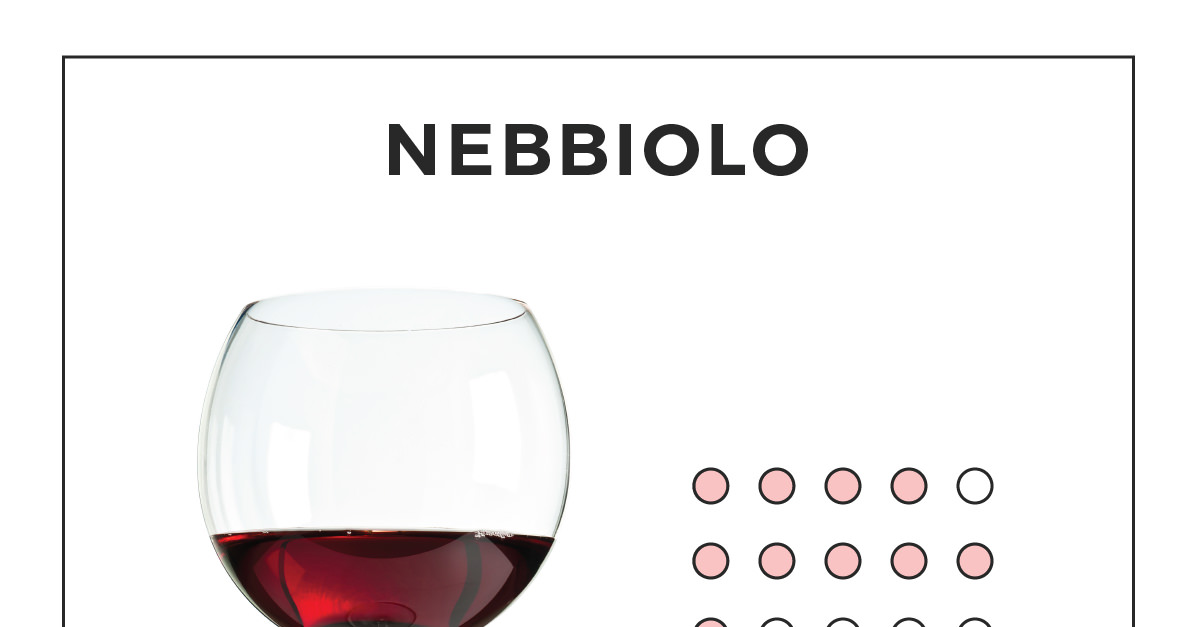 An Illustrated Guide To Nebbiolo photo