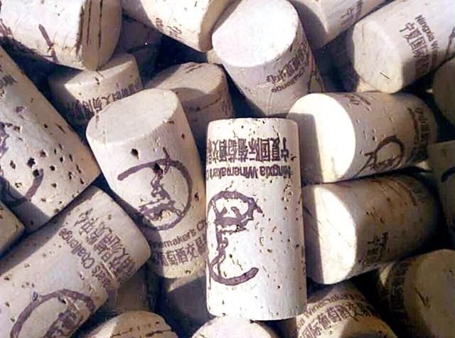 Ningxia Winemakers Challenge photo