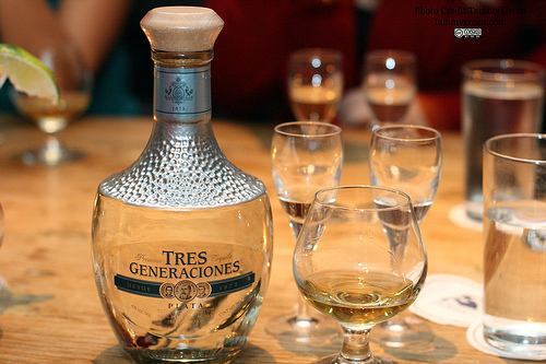 plata These Are The 10 Best Tequilas In The World, According To 10000 Tequila Drinkers