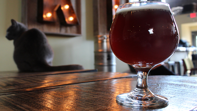 If This Vegan Brewery Has Its Way, Beer Can Save The World photo