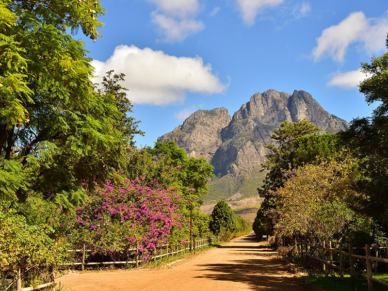 Western Cape Province, South Africa photo