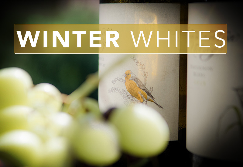 White Wines for Winter photo