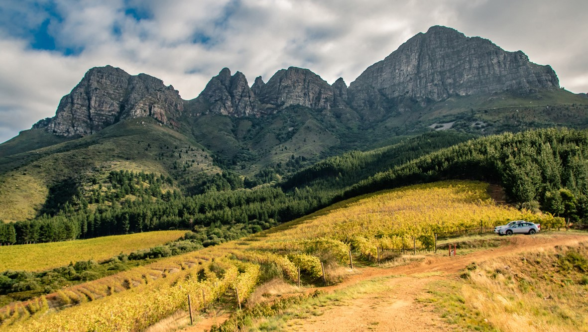 Lourensford Announces The Autumn Winners Of Its Instagram Competition photo