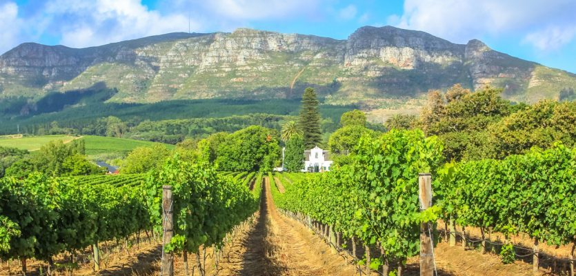 New 'cape Town' Wine Of Origin 'ground-breaking' For South African Industry photo