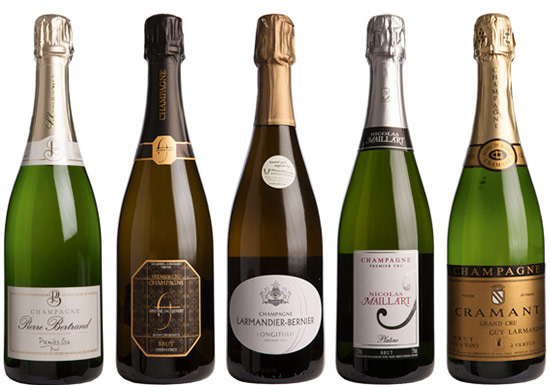 Great Value Champagne Made By Growers photo