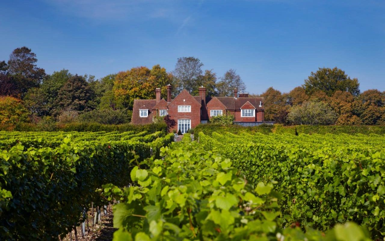 Victoria Moore: Visit The English Vineyards Putting Us On The Map photo
