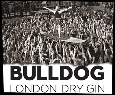 Bulldog Gin's Ibiza Rocks From Acclaimed Photographer Jérôme Ferrière Launches At London's Lights Of Soho Tomorrow photo