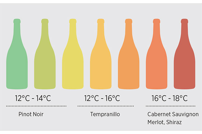 Why The Temperature Of Wine Matters photo