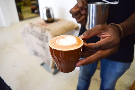 Tribe Coffee heads to national SCASA championship after Good Food and Wine Show competition success photo