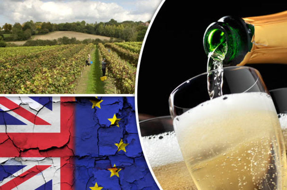Brexit Gives British Wine A Sales Boost As Vineyards Take French On At Their Own Game photo