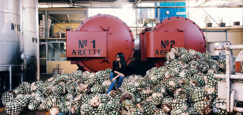 Is Tequila The World?s Most Misunderstood Spirit? photo