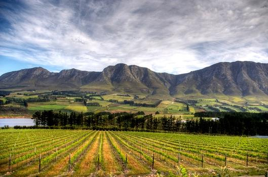 The Wine Route You Really Should Know About photo